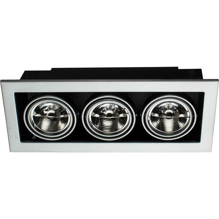Точечный поворотный светильник Arte Lamp A5930PL-3SI