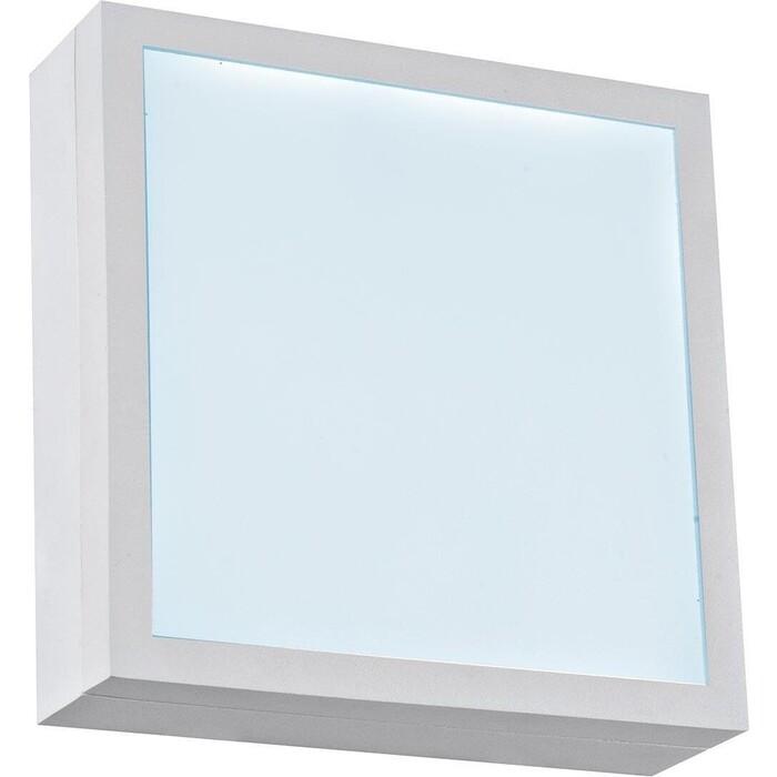 Светильник iLedex Настенно-потолочный светодиодный CReator X068116 WH-6000K