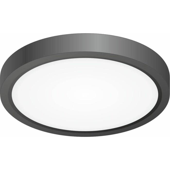 Светильник Citilux Потолочный светодиодный Бейсик CL738121N