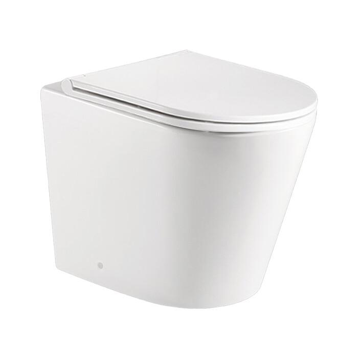 Унитаз приставной (чаша) BelBagno Flay-R безободковый (BB1003CBR)