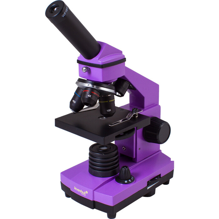 Микроскоп Levenhuk Rainbow 2L PLUS Amethyst/ Аметист
