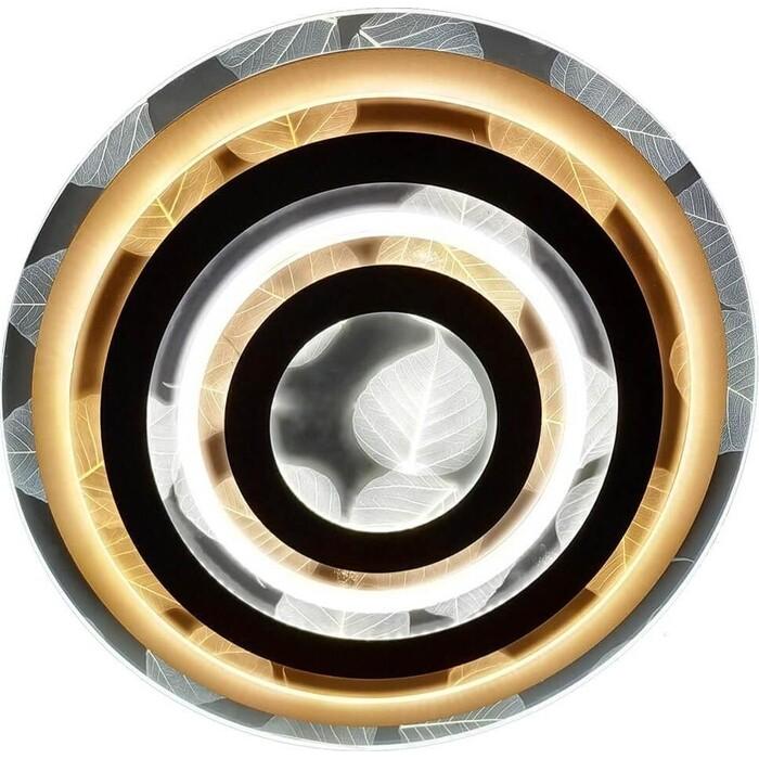 Светильник Hiper Потолочный светодиодный Cassiopea H817-2