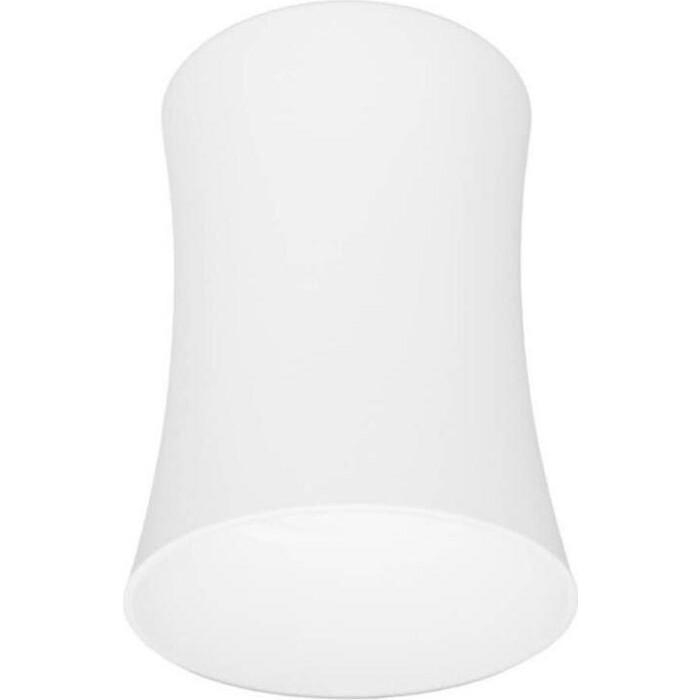 Светильник Lumina Deco Потолочный Malton LDC 8053-B SS-D85*H115 WT