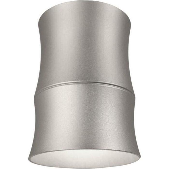 Светильник Lumina Deco Потолочный Riston LDC 8053-C SS-D85*H115 SL