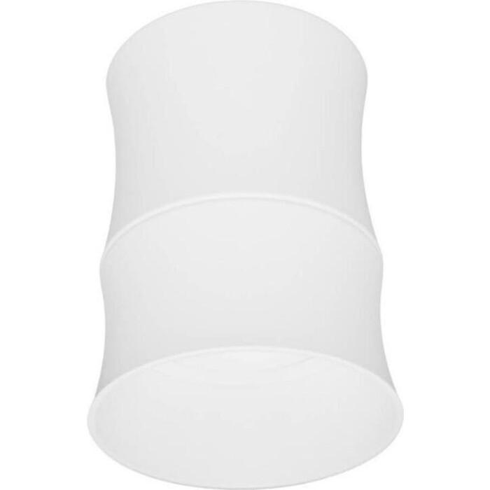 Светильник Lumina Deco Потолочный Riston LDC 8053-C SS-D85*H115 WT