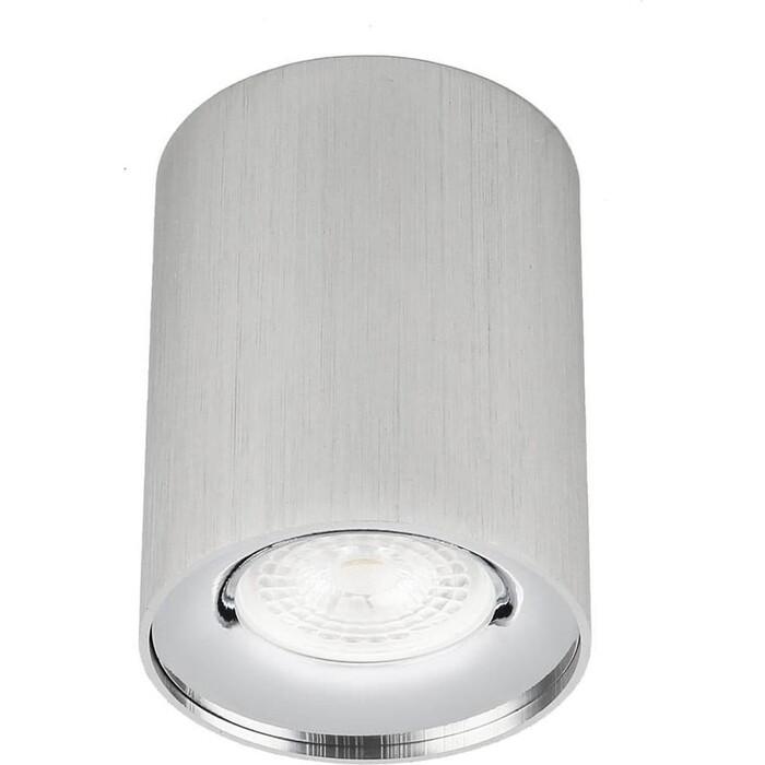 Светильник ЭРА Потолочный OL1 GU10 SL/CH Б0041504