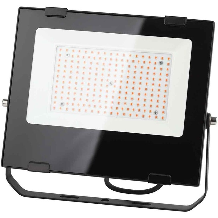 Прожектор ЭРА светодиодный PRO 100W 1200K Fito-100W-RB-Led Б0046369