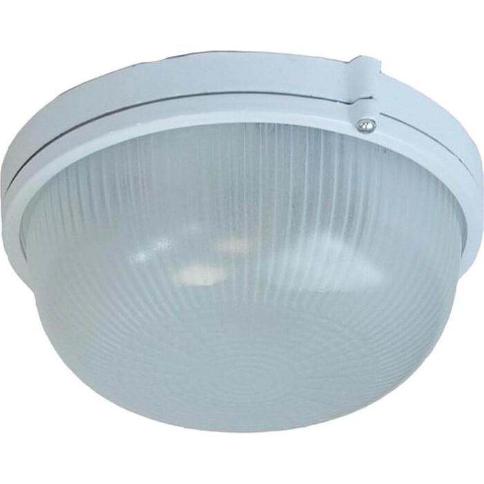 Светильник ЭРА Настенно-потолочный Акватермо НБП 03-100-001 Б0048420