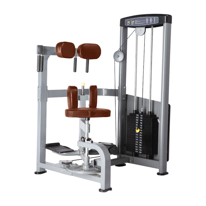 Торс-машина Bronze Gym D-011 коричневый