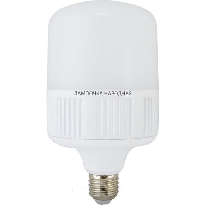 Лампа TDM ELECTRIC светодиодная T-80 Вт-230 В-4000 К-E27 (160x265 мм) НАРОДНАЯ