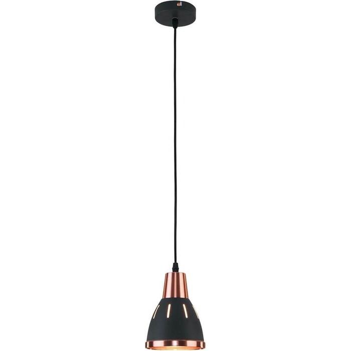 Светильник Eurosvet Подвесной 50173/1 черный