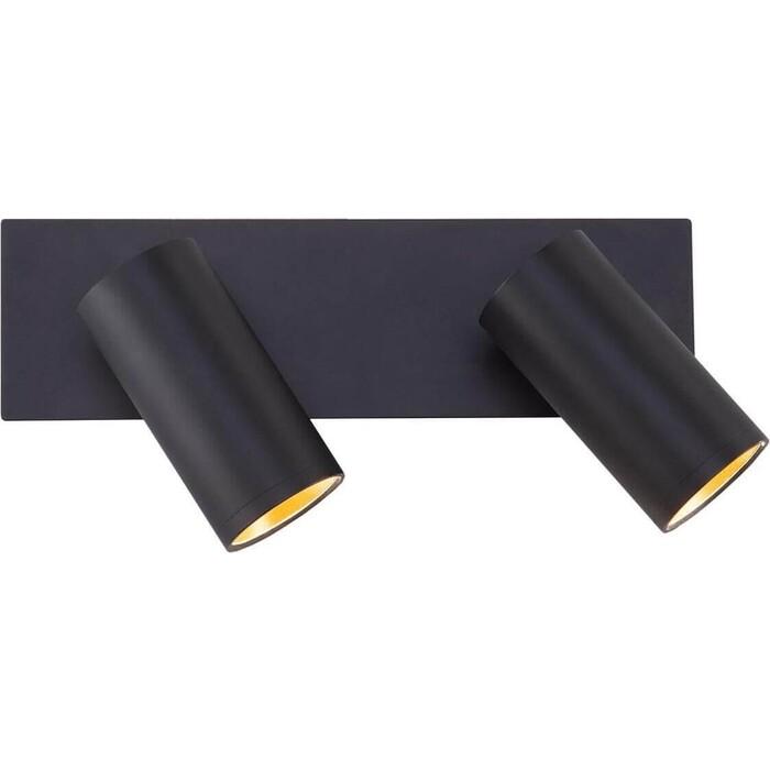 Спот Eurosvet Светодиодный Fleur 20066/2 LED черный/золото