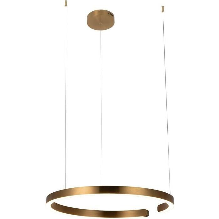 Светильник Loft IT Подвесной светодиодный Ring 10013L