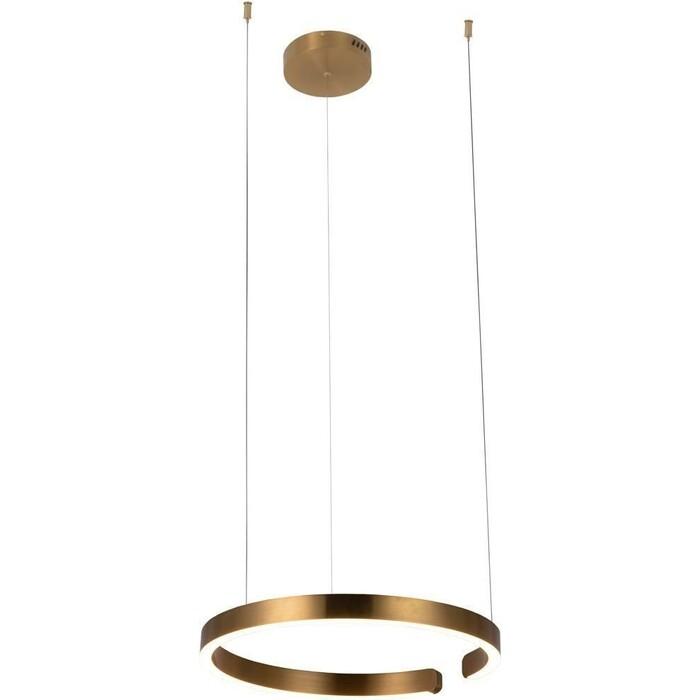 Светильник Loft IT Подвесной светодиодный Ring 10013M