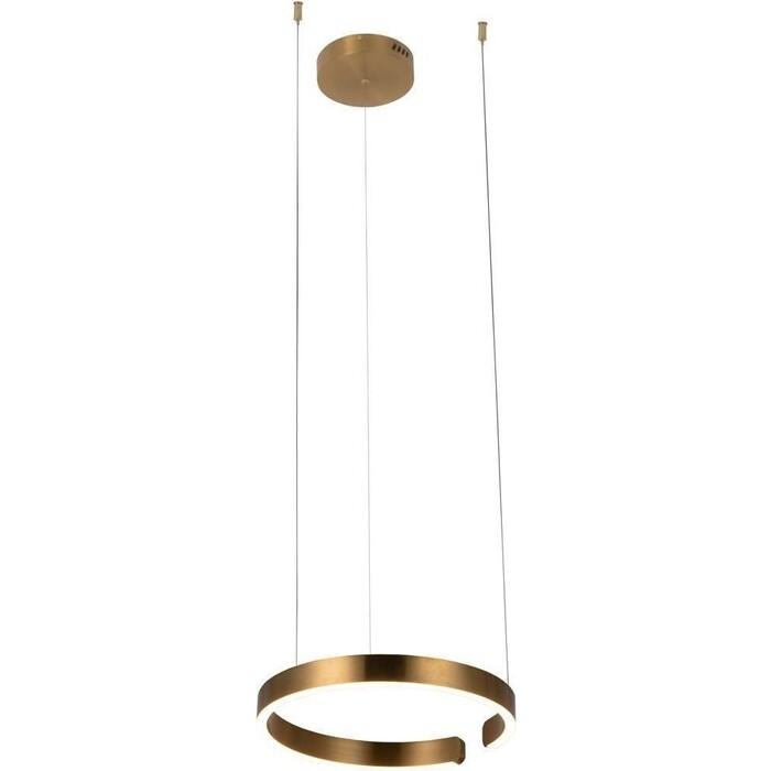 Светильник Loft IT Подвесной светодиодный Ring 10013S