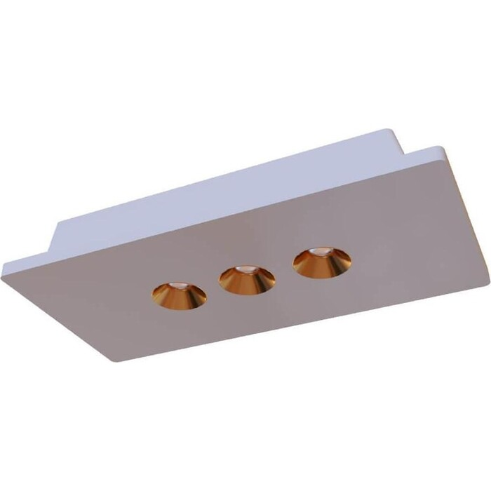 Светильник Loft IT Потолочный светодиодный Architect OL1072-WG/3