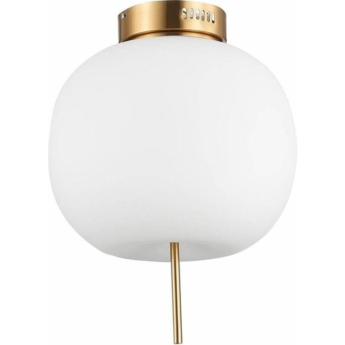 Светильник ST-Luce Потолочный светодиодный Lacus SL1621.202.01