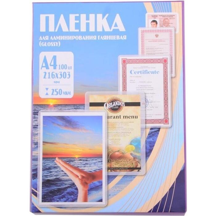 Пленка для ламинирования Office Kit 250мкм A4 (100шт) глянцевая 216х303мм (PLP12123-1)