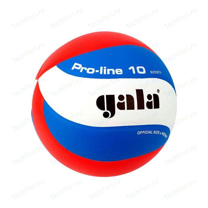 Мяч волейбольный Gala Pro-Line 10 размер 5, цвет бело-голубо-красный (BV5581S) платье oodji ultra цвет красный белый 14001071 13 46148 4512s размер xs 42 170