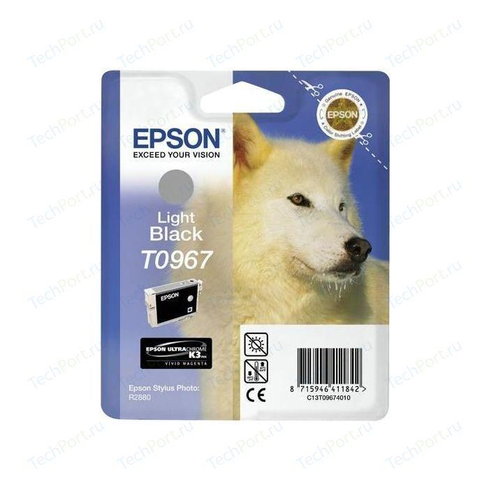 Картридж Epson R2880 (C13T09674010)