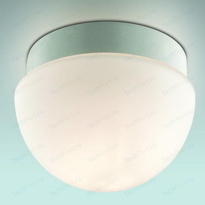 Потолочный светильник Odeon 2443/1B