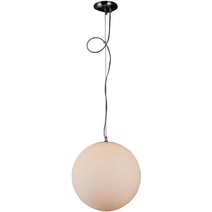 Потолочный светильник ST-Luce SL290.513.01