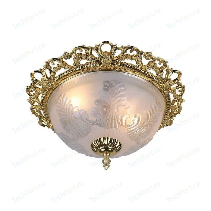 Потолочный светильник Arte Lamp A8002PL-2GO
