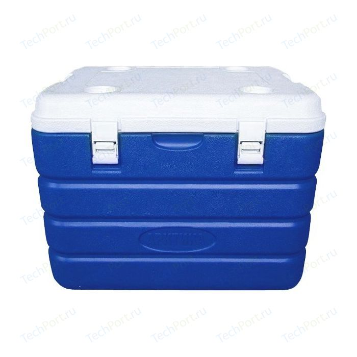 Изотермический контейнер 60 л Арктика синий (2000-60)
