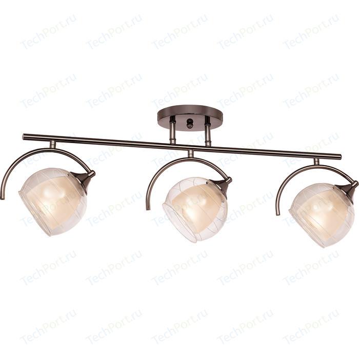 Потолочная люстра Silver Light Sfera 255.59.3