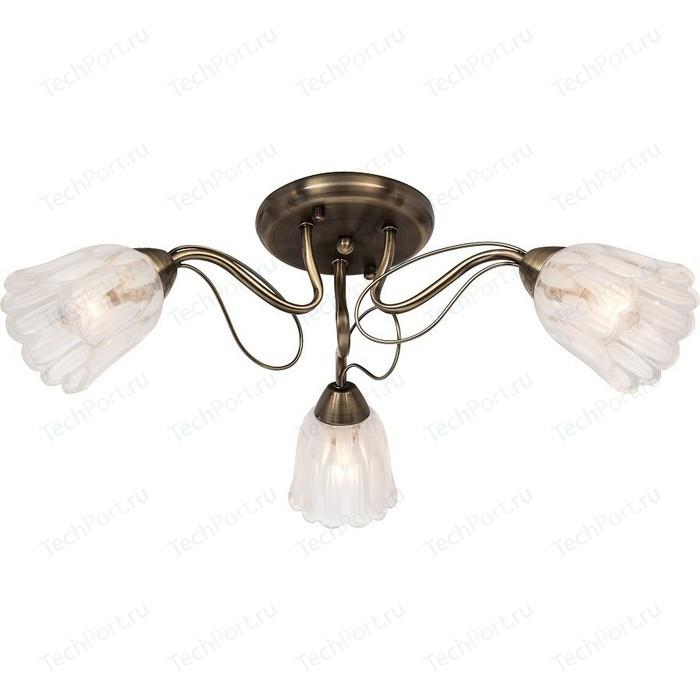 Потолочная люстра Silver Light Azalea 504.53.3