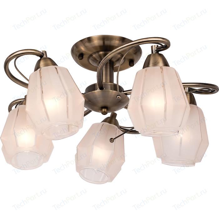 Подвесная люстра Silver Light Brazil 506.53.5