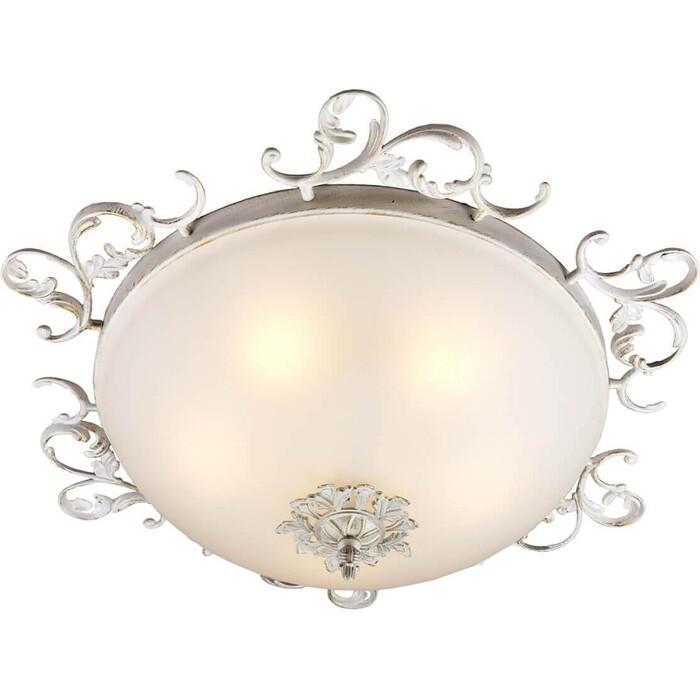 Потолочный светильник Omnilux OML-76517-05 накладной светильник omnilux om 228 oml 22807 05