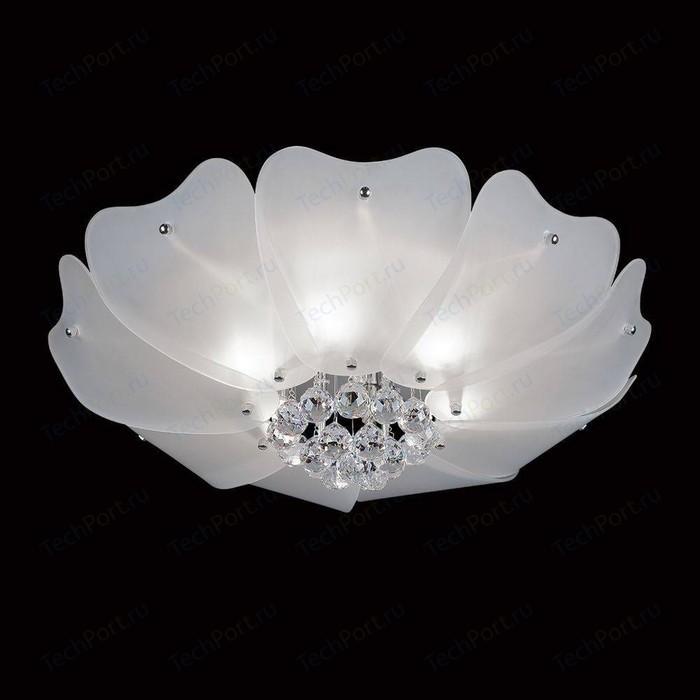 Потолочный светильник Lightstar 804020 потолочный светильник lightstar 804020
