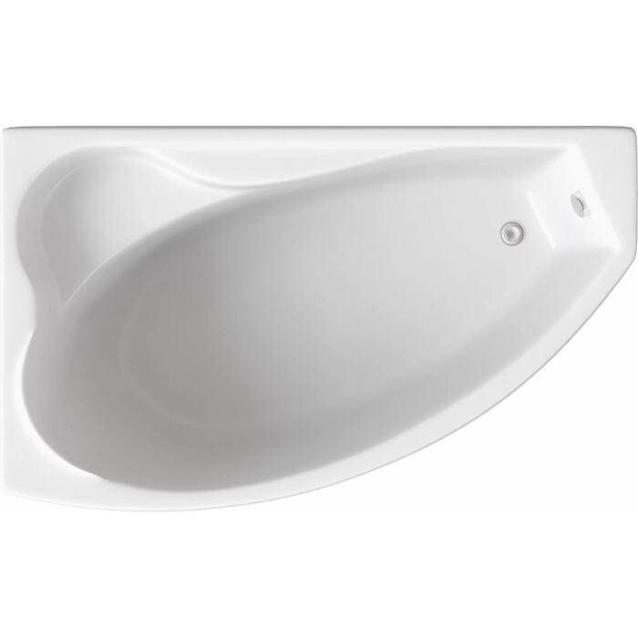 Акриловая ванна BAS Николь левая 170x100 с каркасом, без гидромассажа (В 00027)
