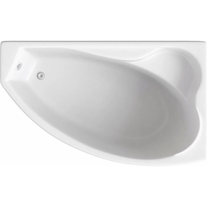 Акриловая ванна BAS Николь правая 170x100 с каркасом, без гидромассажа (В 00028)