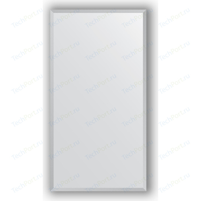 Зеркало в багетной раме поворотное Evoform Definite 56x106 см, сталь 20 мм (BY 1079)
