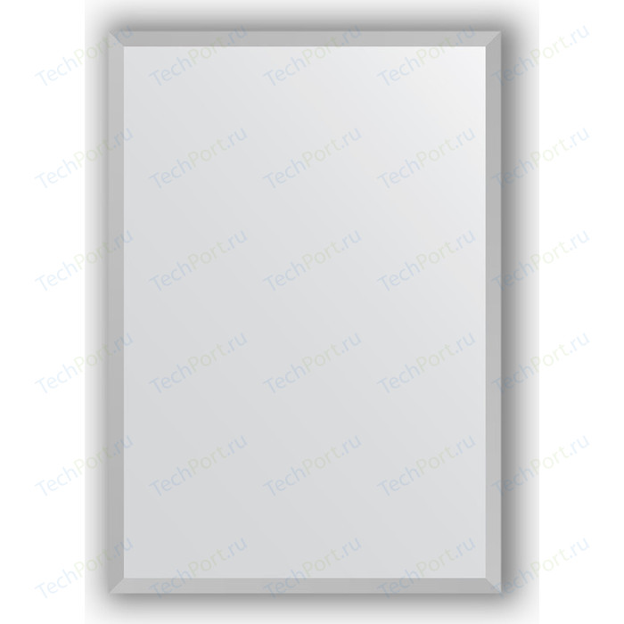 Зеркало в багетной раме поворотное Evoform Definite 46x66 см, хром 18 мм (BY 3033)