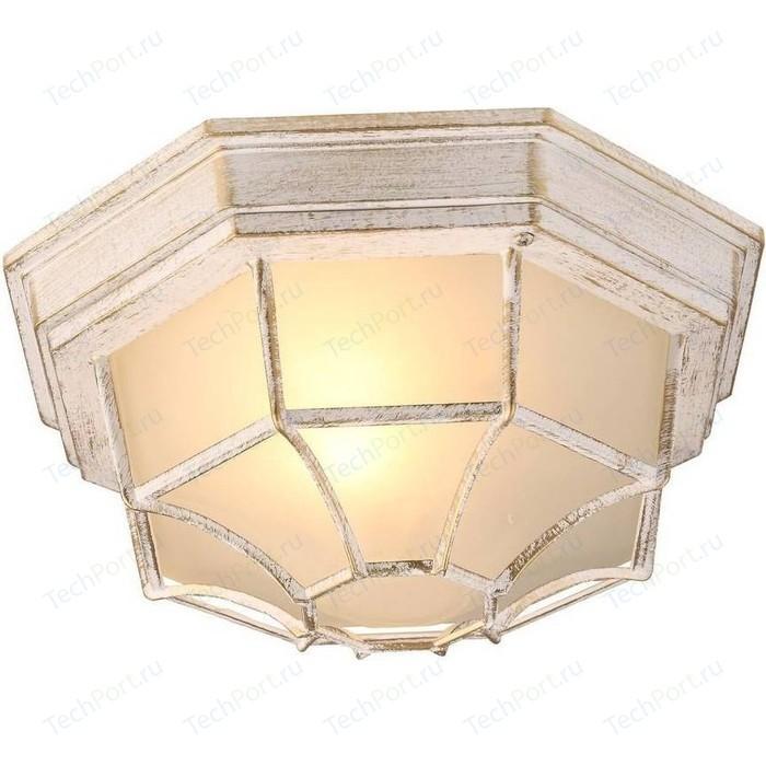 Уличный потолочный светильник Arte Lamp A3121PF-1WG