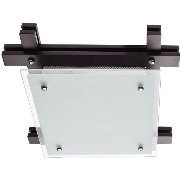 Потолочный светильник Arte Lamp A6462PL-2CK