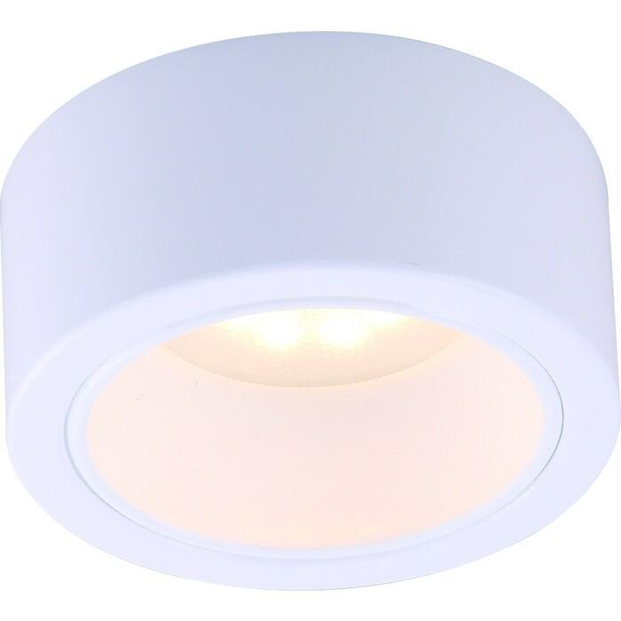 Потолочный светильник Arte Lamp A5553PL-1WH
