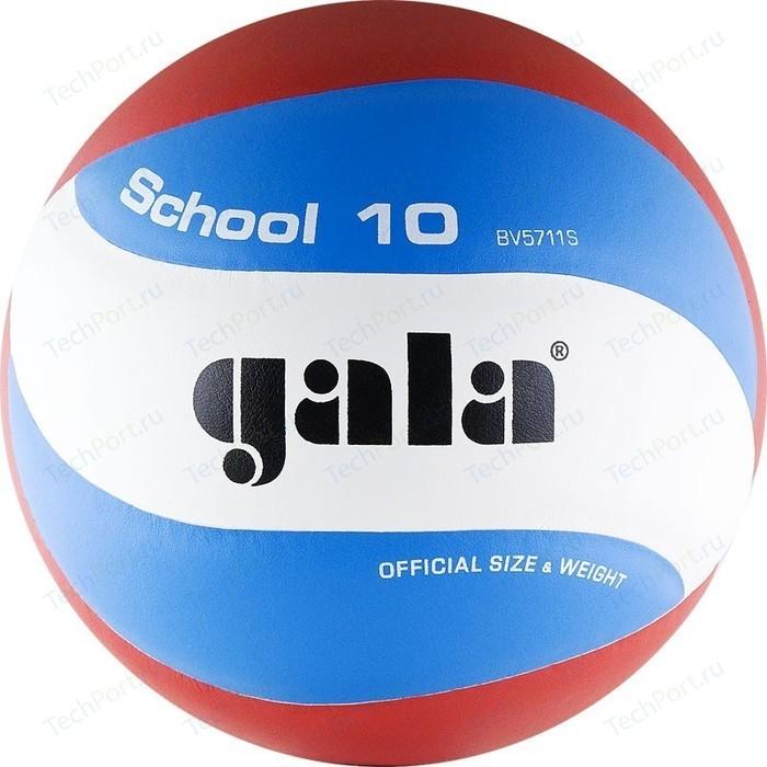 Мяч волейбольный Gala School 10 (BV5711S р. 5)