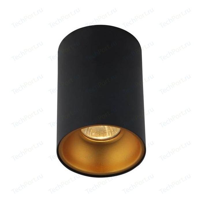 Потолочный светильник Crystal Lux CLT 411C BL-GO