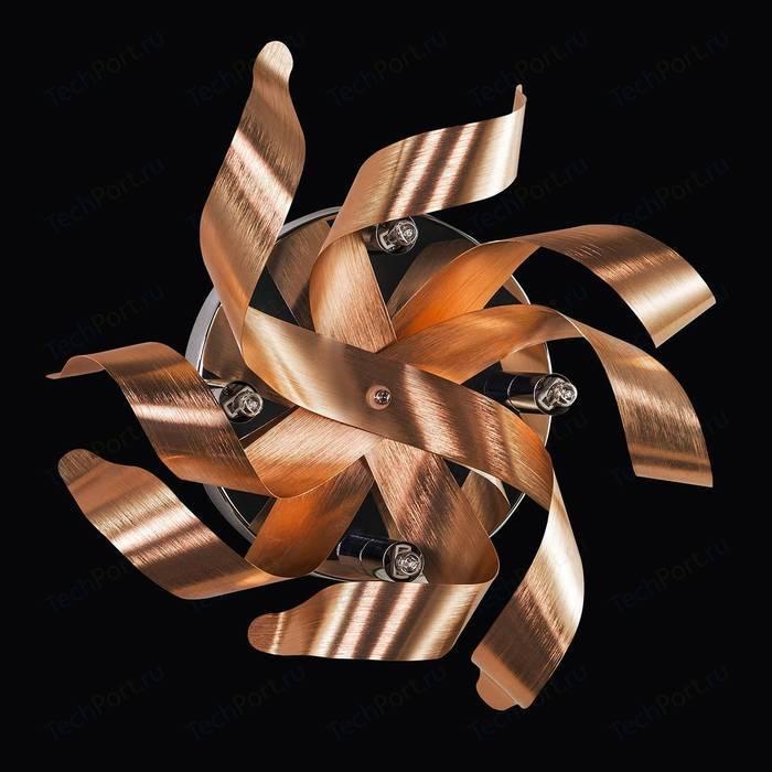 Настенный светильник Lightstar 754641