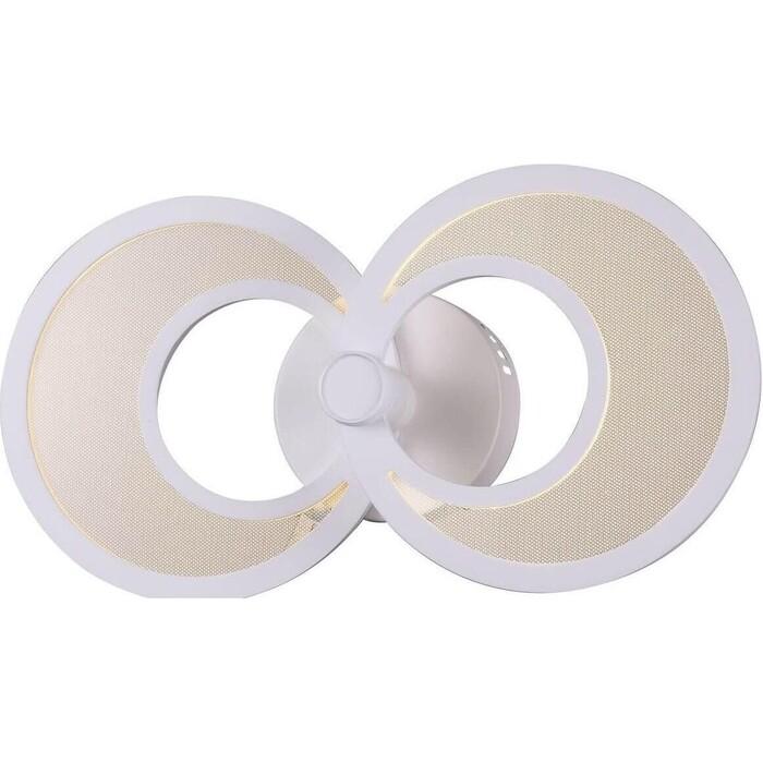 Настенный светодиодный светильник ST-Luce SL898.501.02