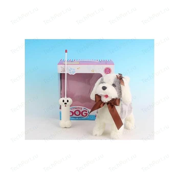 Радиоуправляемая плюшевая собака Create Toys Болонка