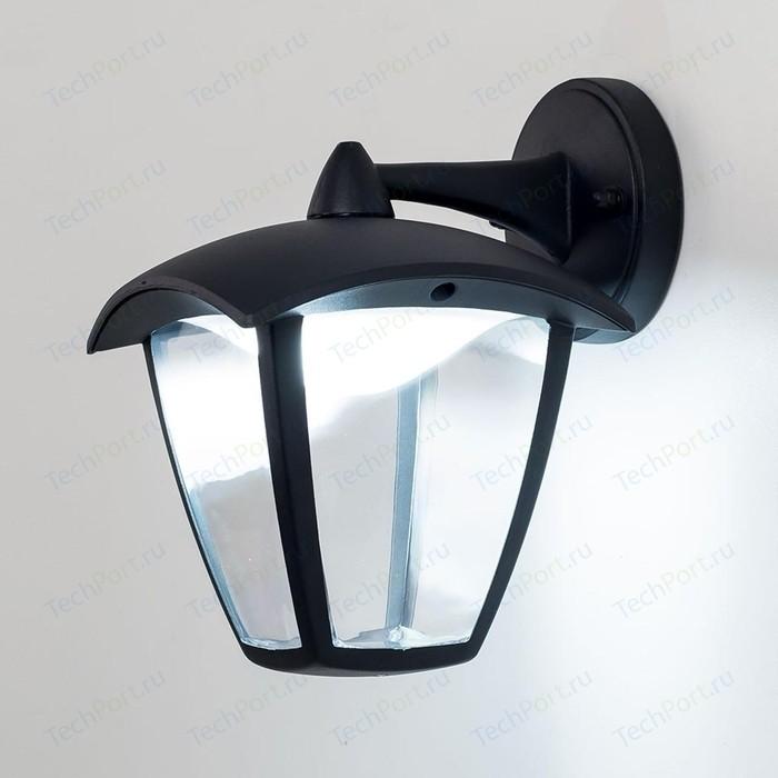Уличный настенный светодиодный светильник Citilux CLU04W2