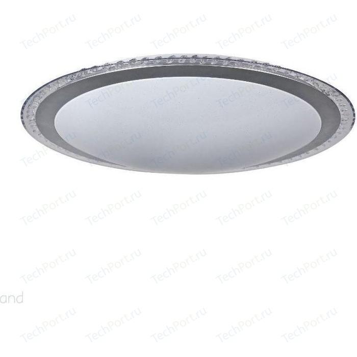 Потолочный светодиодный светильник Freya FR6441-CL-60-W