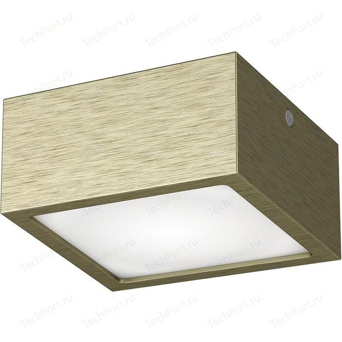 Потолочный светодиодный светильник Lightstar 211921