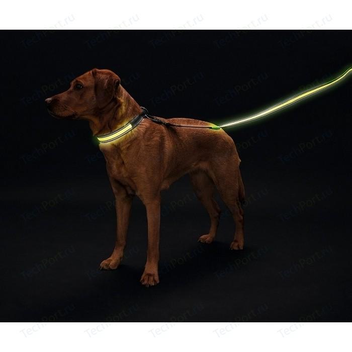 Поводок Hunter LED Manoa Glow 30/120 желтый светящийся для собак