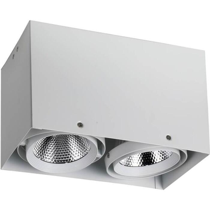 Потолочный светодиодный светильник Favourite 1986-2U